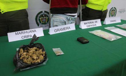 Privadas de la libertad 13 presuntos integrantes de 'Los Zánganos' por microtráfico en Caicedonia (Valle)