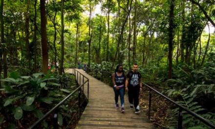Se reactiva el turismo en Medellín y Antioquia y se potencia con agenda comercial