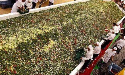 Festival ruso busca romper récord de Guinness con la ensalada más grande del mundo